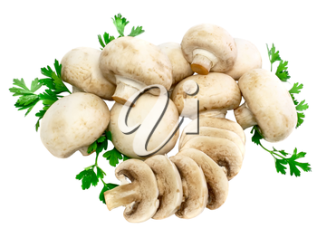 Ripe mushroom champignon with green parsley leaves isolated on white background.