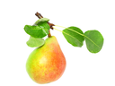 Single pear with stem and green leaf. Isolated over white.