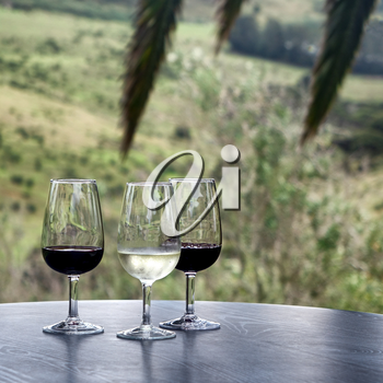 Red and white wine in glasses on dark table outside with tropical palm tree branches in background