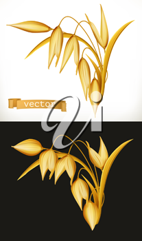 Oat. 3d realistic vector icon