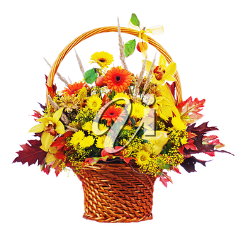 Colorful flower bouquet arrangement centerpiece in wicker basket isolated on white background. Closeup.
