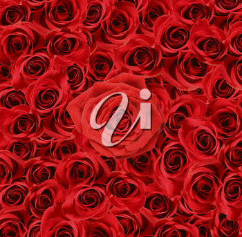 Royalty Free Photo of Red Roses Background