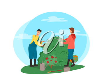 Man and woman tending bushes vector, people cutting flora with special gardening scissors, roses and flowering plant with foliage and frondage isolated