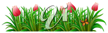 Illustration of a garden with red flowers on a white background