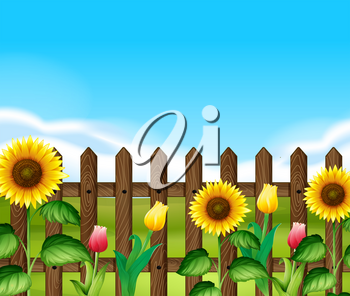 Wooden fence with flowers in the garden illustration