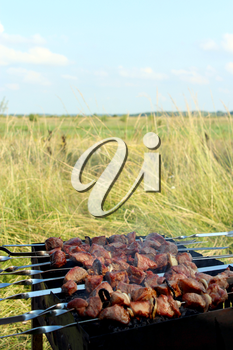 appetizing barbecue with great pieces of meat on the fire
