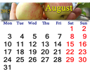 beautiful calendar for the August of 2015 year with image of apples