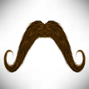Brown Hairy Mustache Isolated on Grey Background