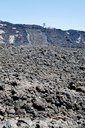hardened lava field on Etna slope, Sicily