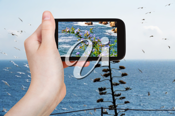 travel concept - tourist takes picture of mediterranean sea coastline in Costa Brava coast on smartphone, Spain
