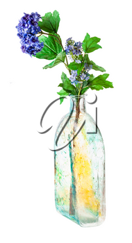 artificial hydrangea flowers in hand painted glass flask isolated on white background