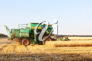 Combine harvester working on summer wheat field.