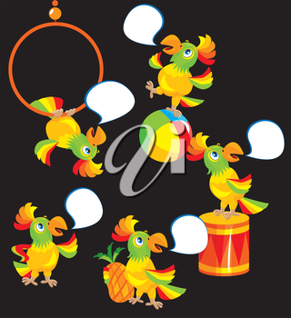 Set of parrot cartoons for the childish ABS book