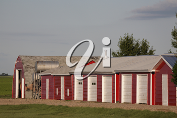 neat farm buildings in Saskatchewan