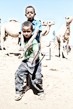 ETHIOPIA,BABILE-CIRCA  JANUARY 2018--unidentified    young boys in the camels market