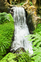 Beauty small waterfall in the deep jungle