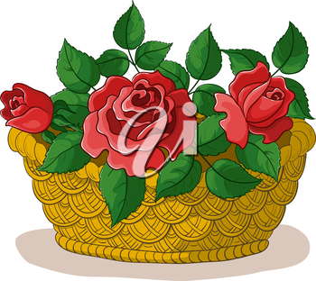 wattled basket with flowers red roses and green leaves. Vector