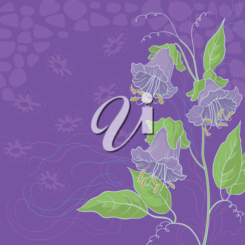 Floral background, Kobe flowers and abstract pattern. Vector