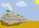 Lonely flower on a rock in desert look at the sun. Vector