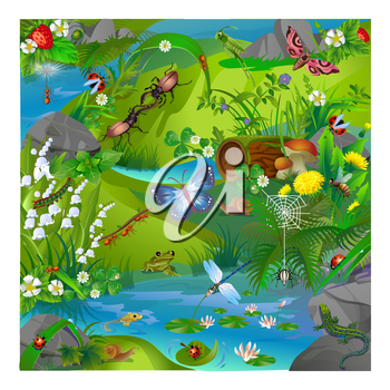 vector illustration of summer life in the forest insects. Images of dragonflies, ladybirds, ants, butterfly, grasshopper, snail, spider, bee and frog and lizard.