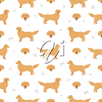 Golden retriever dogs in different poses and coat colors seamless pattern. Vector illustration