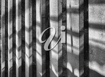 Vertical dramatic black and white architecture stairs with shadows background backdrop