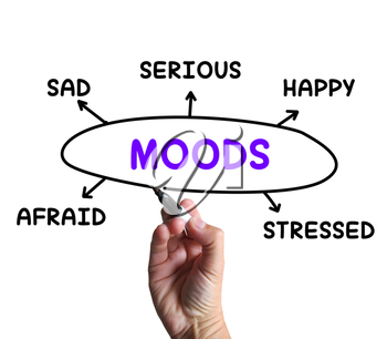 Moods Diagram Meaning Happy Sad And Feelings