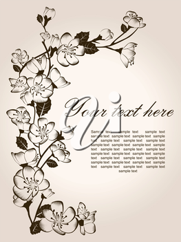 Spring floral background, hand drawn vector flowers
