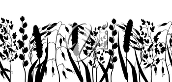 Seamless border with herbs and cereal grass silhouettes. Floral ornament of meadow plants.