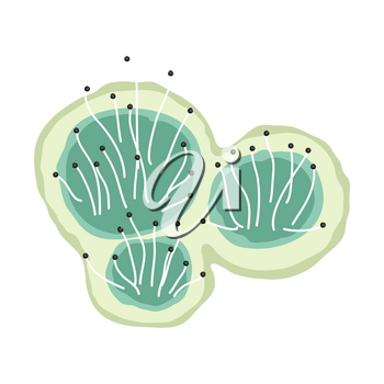 Green mold icon. Illustration solated on white background.