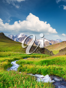 River on mountain field. Beautiful natural landscape in the summer time