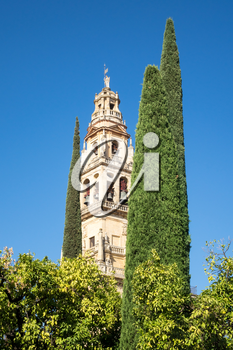 Bell tower of Mosque and Cathedral of our Lady of the Assumption in Cordoba, Andalucia, Spain
