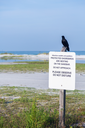 Sign post warning to keep away from protected shorebirds on Fort de Soto county park beach in Florida