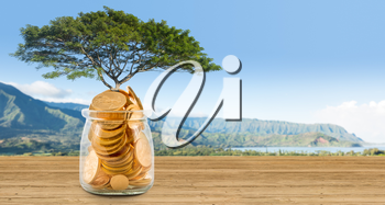 Large tree growing out of a glass savings jar full of pure gold coins to illustrate investment planning