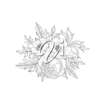 Floral background. Flowers and leaves engraving. Summer flowers bouquet isolated.