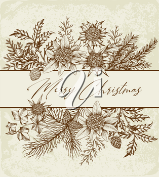Vintage Christmas greeting card with evergreen plants and flowers. Decorative background for Christmas and new year. Hand drawn vector illustration.