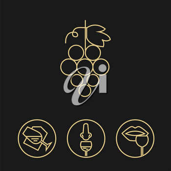 Wine gold icons collection on dark background. Modern outline style. Grapes and tasting process. Can be used for wine shop, wine company and club, for typographic purpose