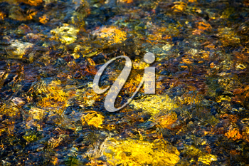 Sun light reflected from stony bottom of river. Golden tone river water texture background
