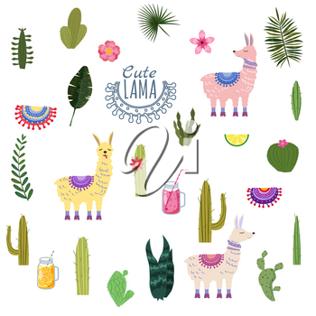 Set Lama Alpaca cacti drinks and decorative. Collection of elements for decoration