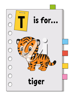 T is for tiger. ABC game for kids. Word and letter. Learning words for study English. Cartoon character. Color vector illustration. Cute animal.